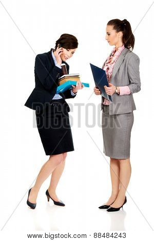 Two businesswomans discussing about their plans.