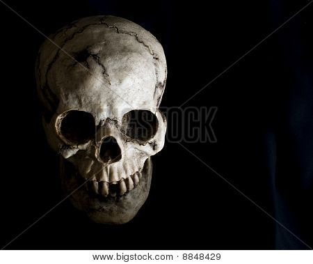 Face Of Human Skull In Shadow