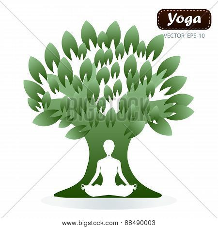 Woman In Yoga Pose In Front Of Tree
