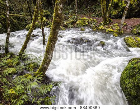 Oregon Waterfall - near Crater Lake National Park