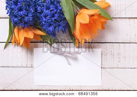 Background With Fresh Tulips And Hyacinths And Tag