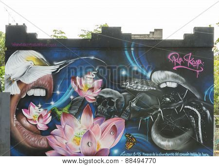 Graffiti Of Snake, Birds, Skulls, Mouth, Lotus, Butterfly And More.