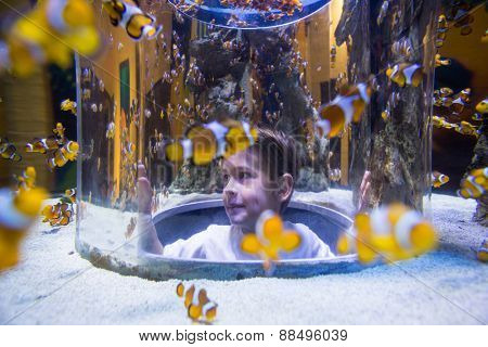 Young man looking at fish into a circular tank at the aquarium