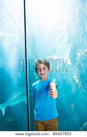 Happy young boys rising his finger in front of a tank at the aquarium
