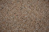 stock photo of turn-up  - Seaside sand that with close - JPG
