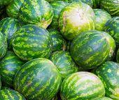 picture of watermelon  - bunch of ripe watermelon - JPG