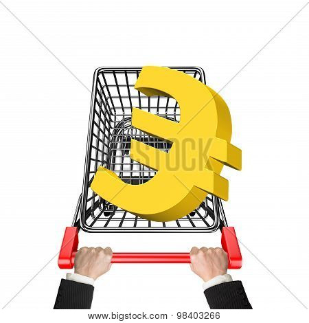 Hands Pushing Shopping Cart With 3D Golden Euro Sign
