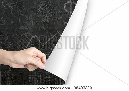 Woman Hand Open Blank White Page Replace Business Doodles