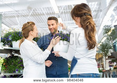Female florist assisting couple in buying purple flower plant at store