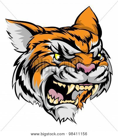 Tiger Mascot Character