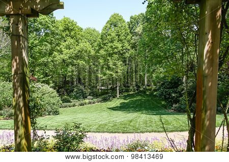 Landscaped Garden Beyond Two Trees