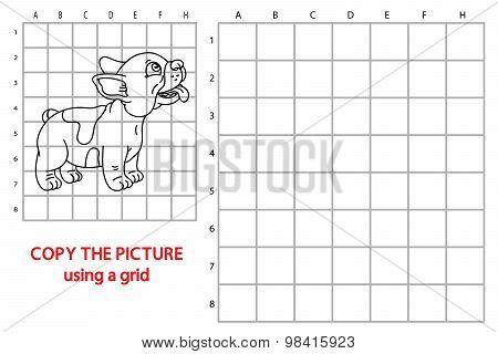 Grid copy dog