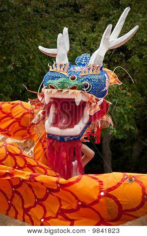 Chinese Dancing Dragon Head