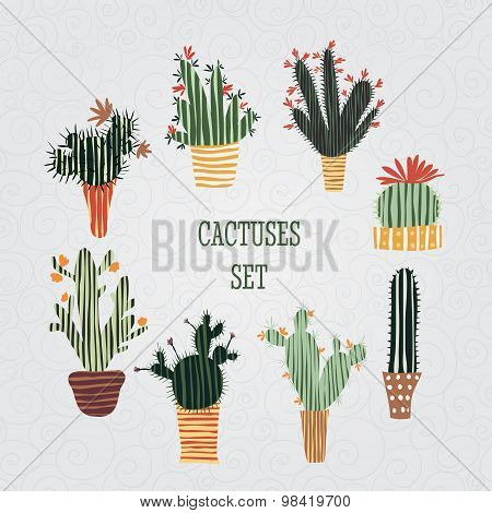 Flat colorful illustration of Mexican succulent plants and cactuses in pots. Vector botanical graphi