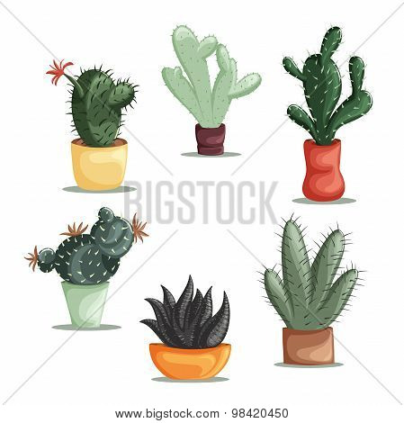 Colorful illustration of succulent plants and cactuses in pots. Vector botanical graphic set with cu