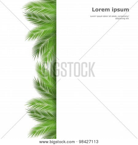 palm template