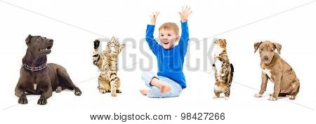 Group of a pets and happy child together