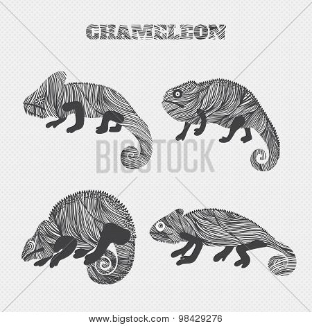 Cartoon chameleon set collection. Stickers, posters, background. Vector illustration