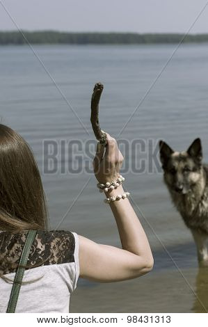 Woman Teasing A Dog