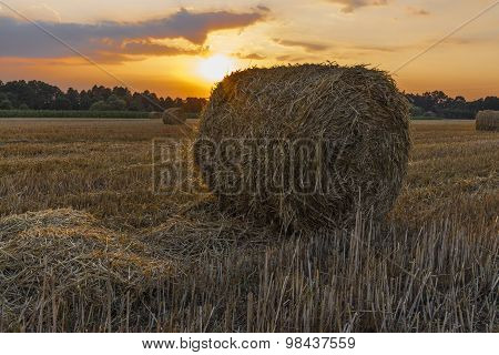 Sheaves of hay in the glow of the sunset