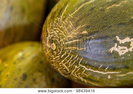 Green Spanish Melon Closeup Detail