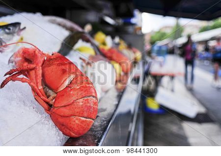 closeup of a fresh lobster and other seafood on sale in an open-air fish market