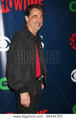 LOS ANGELES - AUG 10:  Joe Mantegna at the CBS TCA Summer 2015 Party at the Pacific Design Center on August 10, 2015 in West Hollywood, CA