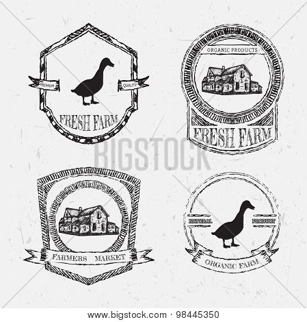 organic farm vintage chalk labels with farmhouse and duck on the grunge background. Retro hand drawn