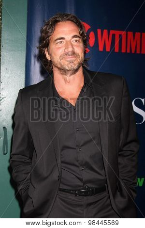 LOS ANGELES - AUG 10:  Thorsten Kaye at the CBS TCA Summer 2015 Party at the Pacific Design Center on August 10, 2015 in West Hollywood, CA