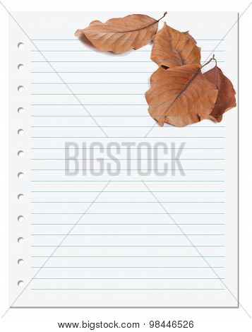 Notebook Paper With Autumn Virginia Creeper Leaf
