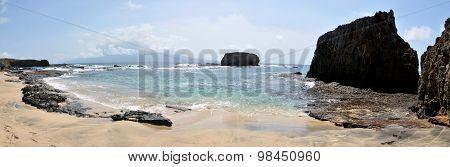 Group Surveying Beach