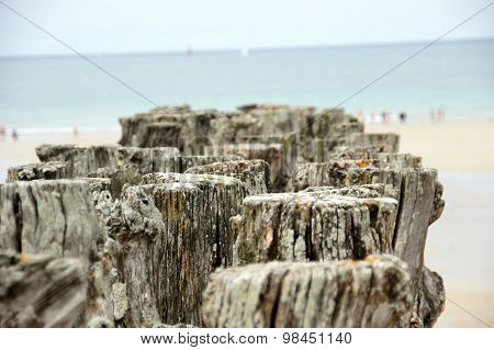 Wooden poles on the coast of Saint Malo