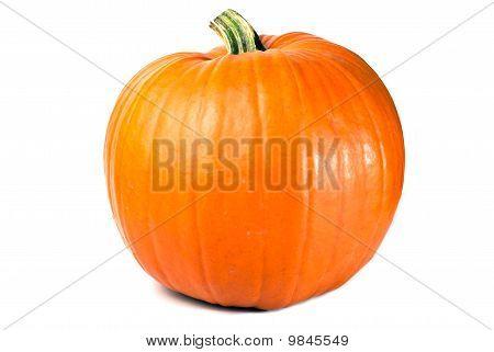 Pumpkin Exempted