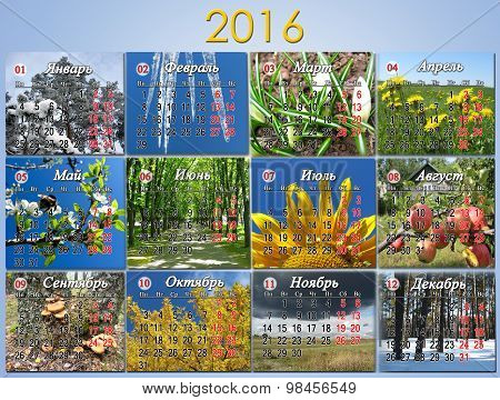 Calendar For 2016 In Russian With Photo For Every Month