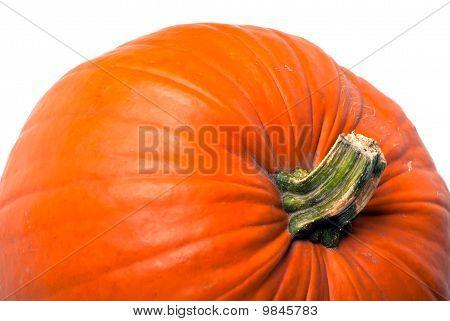 Pumpkin V1