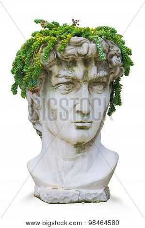 Replica of Michelangelo's Classic Roman God David Bust With Plant Headdress