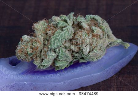 Blueberry Diesel Medical Marijuana Hybrid