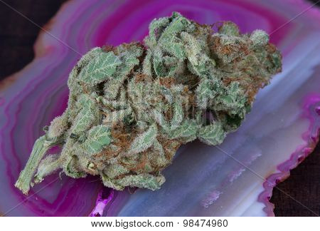 Blueberry Diesel Medical Marijuana