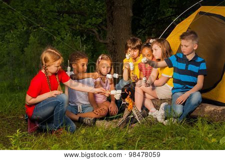 Diverse kids with marshmallow treat near bonfire