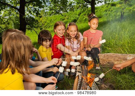 Teenagers sitting near bonfire with marshmallow