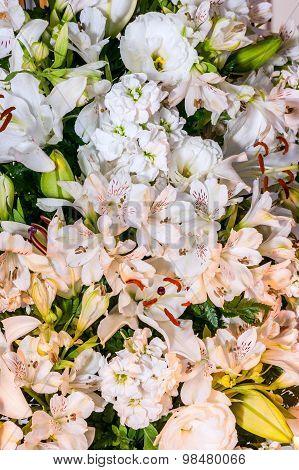 Alstroemeria, Lilium candidum  and Eustoma Grandiflorum in white color
