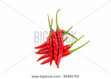 Red Chili Or Chili Pepper.