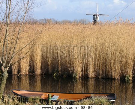 Dutch Reed Landscape 1
