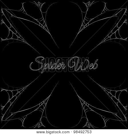 Spider Web Frame With Center Label Content. Elastic Motion Spider Webs Border Template. Vector Illus