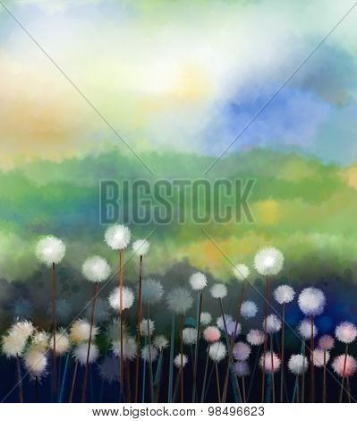 Abstract Oil Painting White Flowers Field In Soft Color. Oil Paintings White Dandelion Flower