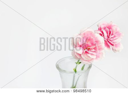 Pink Flower In Vase With Place For Text And Work Path