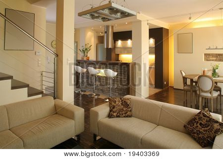 Interior view of the an open home living room in a modern apartment.