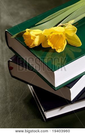 Books and yellow flowers