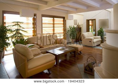 Interior of classically furnished living room.