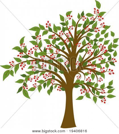 Summer tree with fruits, vector illustration